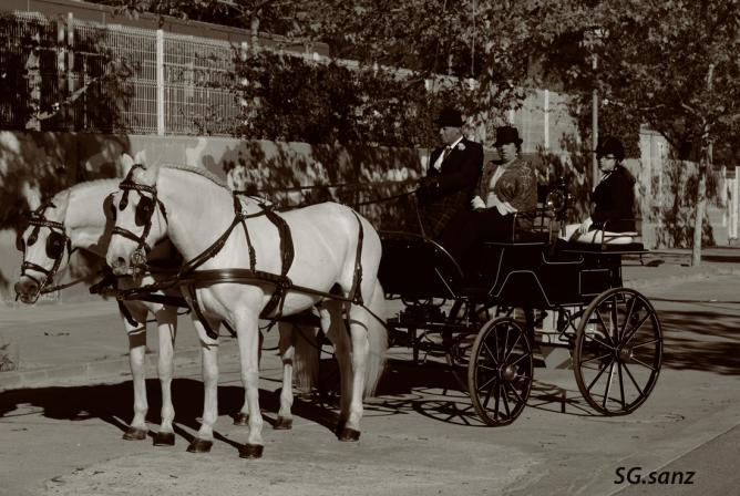 Coche caballos